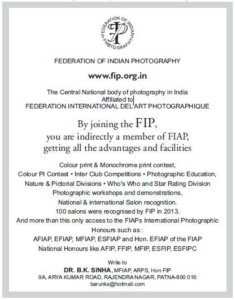 FIP Publicity